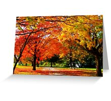Orange, Yellow and Green Greeting Card