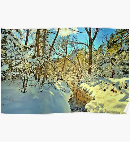 Winter Stream In Prescott Arizona Poster
