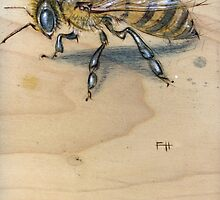 Bee #1 by Fay Helfer