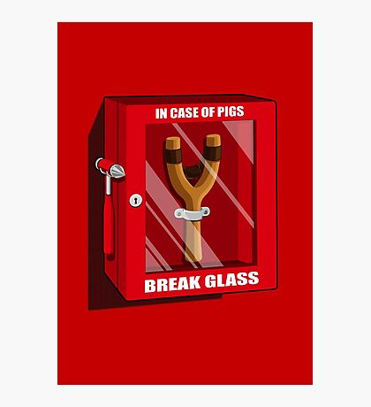 In case of pigs Photographic Print