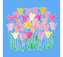 Pink and Yellow Tulips Photographic Print