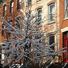 Jersey City After a Wet Snow, Jersey City, New Jersey by lenspiro