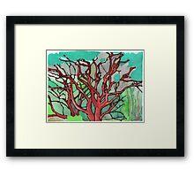 Manzanita Thicket Framed Print