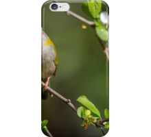 Red-browed finch in a crab apple tree iPhone Case/Skin