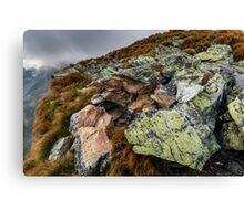 Alpine landscape with rocks Canvas Print