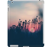 beach sunset iPad Case/Skin