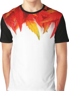 Autumn Crisp Leaves Graphic T-Shirt