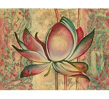 The Lotus Photographic Print