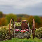 Flower Wagon by MaryTimman