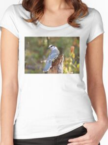 Gray Jay - Algonquin Park Women's Fitted Scoop T-Shirt