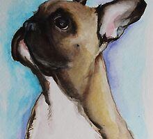 French Bull Dog Puppy by Noewi