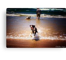 Seize the Day! Canvas Print
