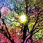 Psychedelic Dreams by Brian Gaynor