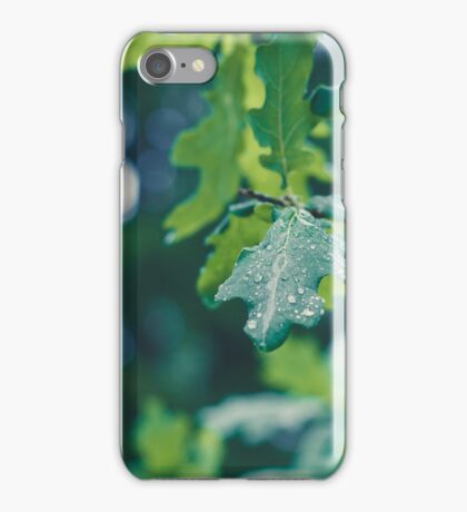 Raindrops on a leaf in the forest iPhone Case/Skin