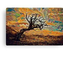 One tree, one sky. Canvas Print