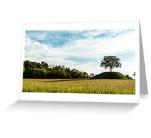 the sun goes down behind a lonely tree Greeting Card
