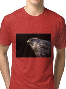 Peregrine Falcon Tri-blend T-Shirt