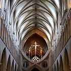 Wells Cathedral Ceiling by Lexa Harpell