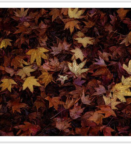 Foil Leaves Sticker