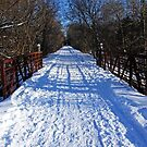 Kissing Bridge Trail by Debbie Oppermann