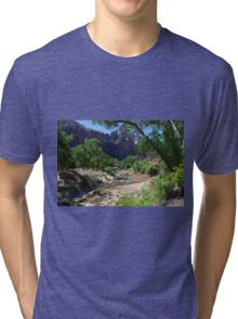 The River In Zion National Park Tri-blend T-Shirt