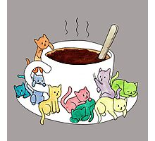 Coffee Cats Photographic Print