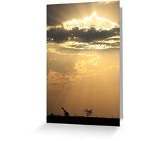 Giraffe Background - Sky Light Wanderer Greeting Card