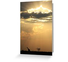 Giraffe Background - Sky Light Wanderer Greeting Card