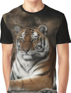 tiger, cats Graphic T-Shirt