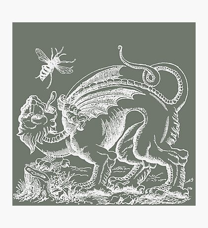 Medieval Monster Chases a Wasp Photographic Print