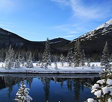 Spray Lakes Reflection by Alyce Taylor