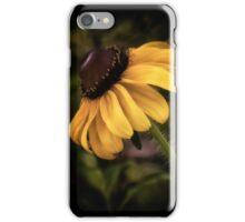 Autumn Treasure iPhone Case/Skin