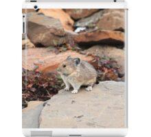 Pika among rocks iPad Case/Skin