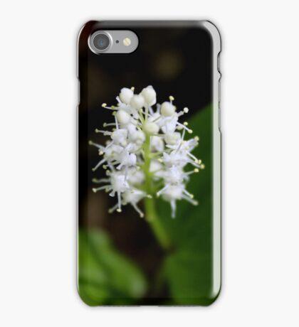 Canada Mayflower iPhone Case/Skin