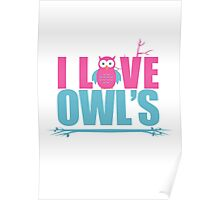 I love Owls Poster