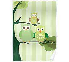 Green Owls Poster