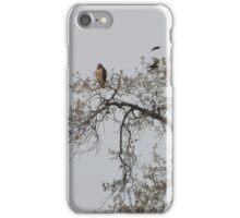 The Hawk iPhone Case/Skin
