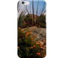 God's Country iPhone Case/Skin