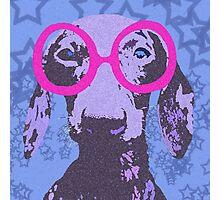Nerdachshund Photographic Print