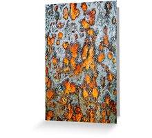 Metal rust background Greeting Card