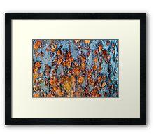 Metal rust background Framed Print
