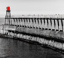 Scenic view of Whitby Pier in autumn sunny  day by Stanciuc