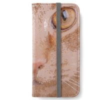 Windows of the Soul iPhone Wallet/Case/Skin