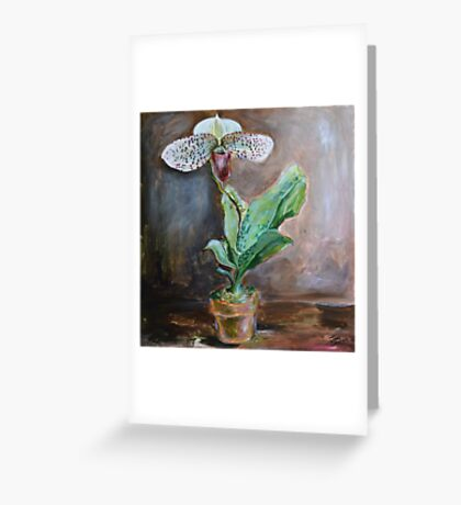 Lady Slipper Orchid Flower in Pot Greeting Card