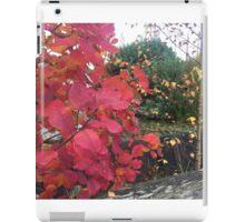 Red Nature iPad Case/Skin