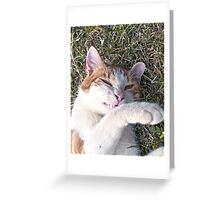 Cat smiling Greeting Card