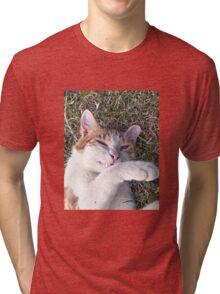 Cat smiling Tri-blend T-Shirt