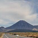On the Road to Mount Doom by Peter Kurdulija