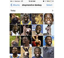Draymond or Donkey Photographic Print
