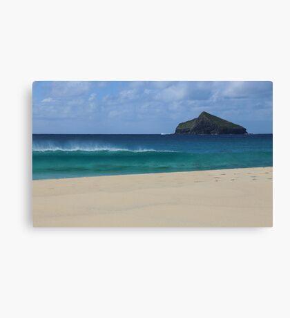 Blinky Beach, Lord Howe Island Canvas Print